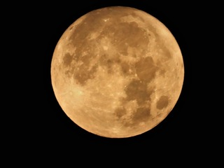 buck moon.jpg